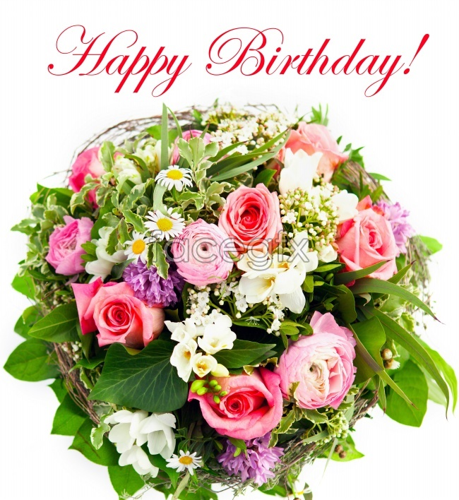 Birthday Flower Picture Over Millions Vectors Stock