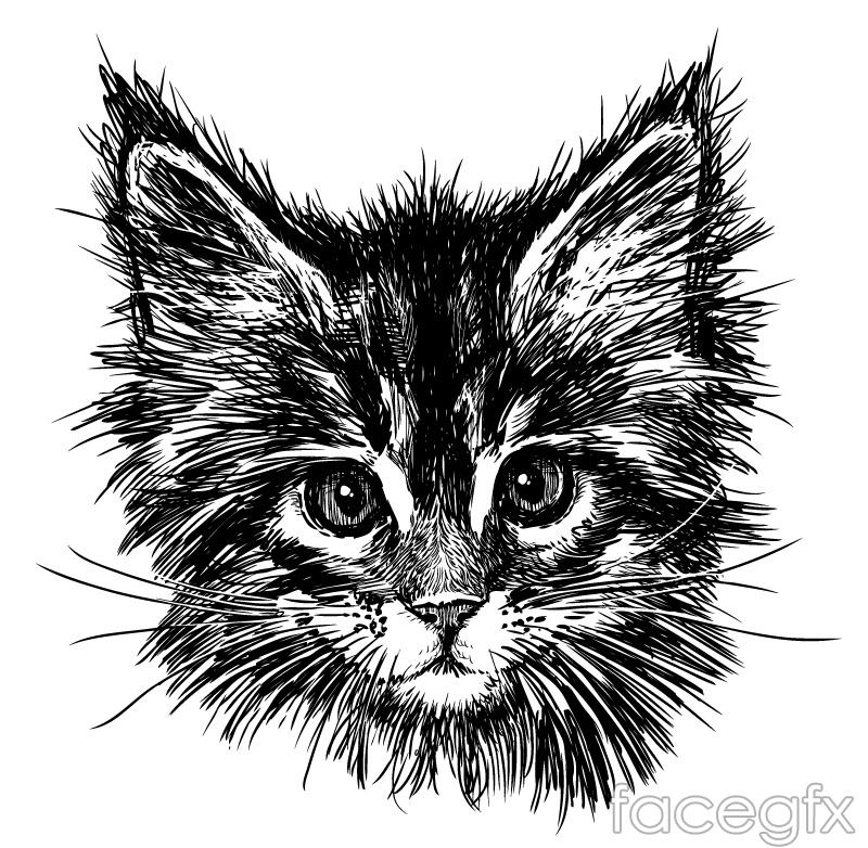Black hand-painted cat head vector – Over millions vectors ... Tabby Cat Cartoon Drawing