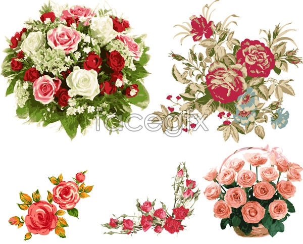 Bouquets of roses vector