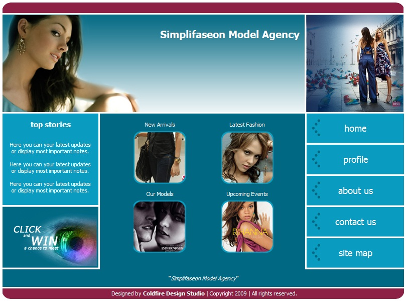 Business Model Agency