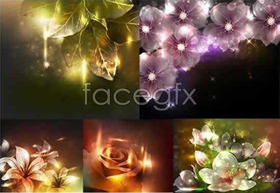Dreams of light and shadow flower leaf vector