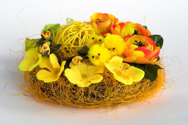 Easter chick pictures download