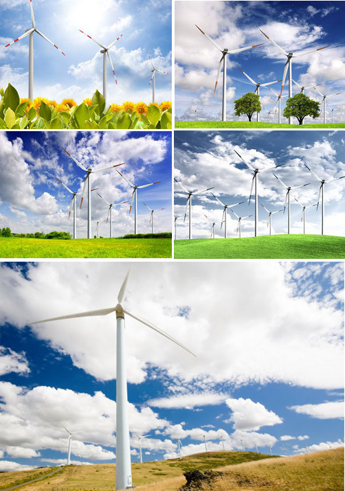 Ecology and wind power PSD