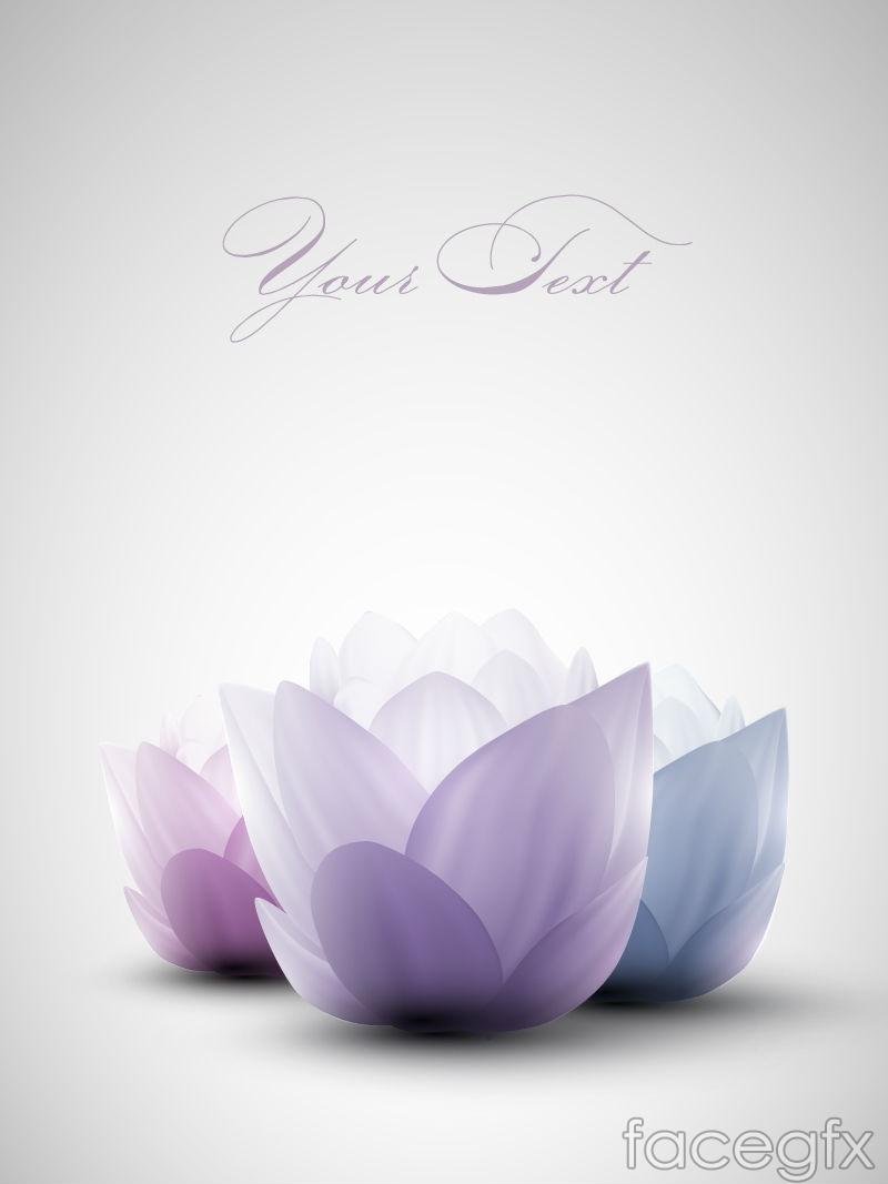 Elegant Lotus Flower Background Vector Over Millions Vectors