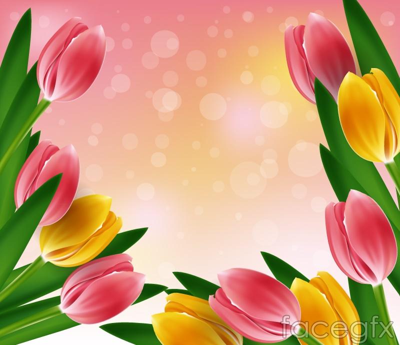 Exquisite Tulip Vector Background