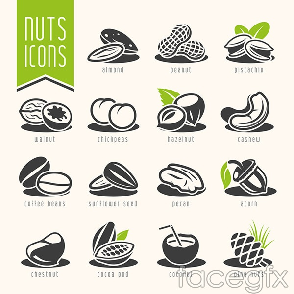 Fashion Nuts Dried Fruit Vector Over Millions Vectors