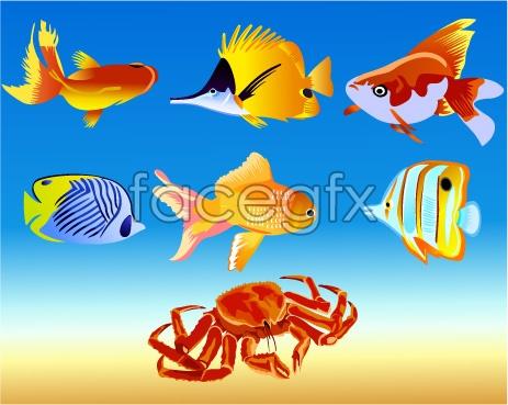 Fish and crab vector