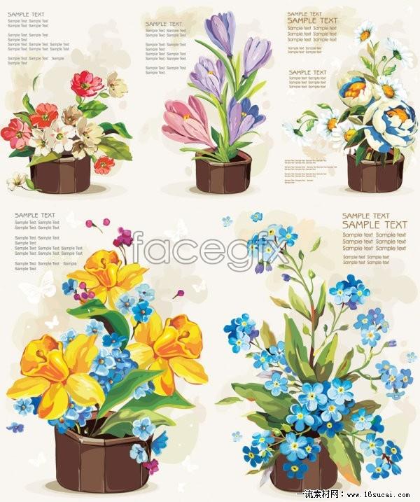 Five pots of flowers vector