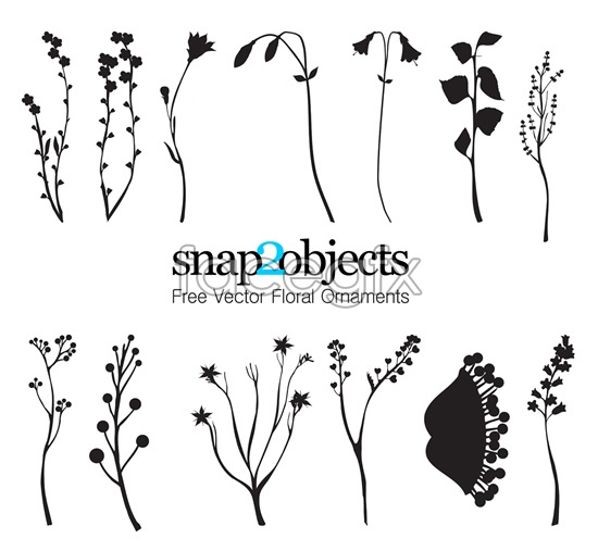 Flowers and foliage silhouettes vector