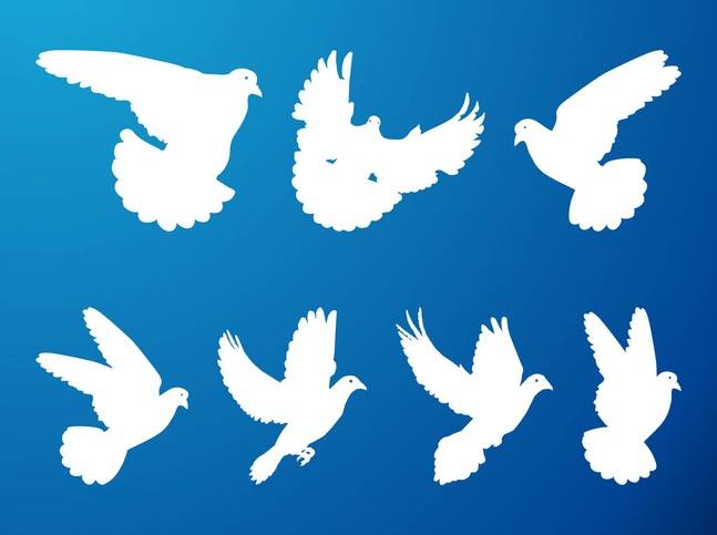 Flying Pigeons Set vector free