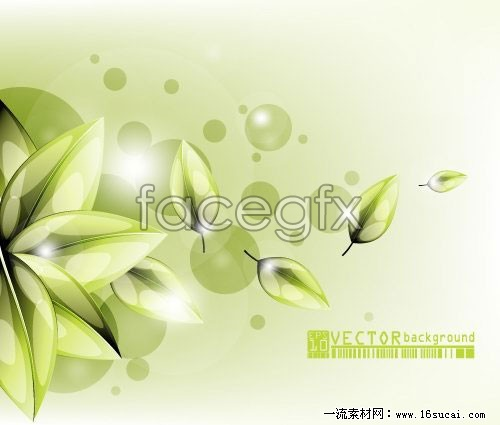 Fresh flowers backgrounds vector graphics c