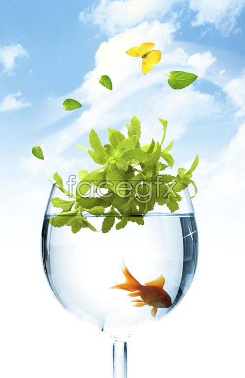 Glass goldfish PSD