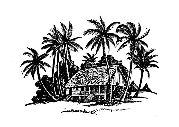 Hand drawing coconut tree and house vector free over millions hand drawing coconut tree and house vector free toneelgroepblik Gallery