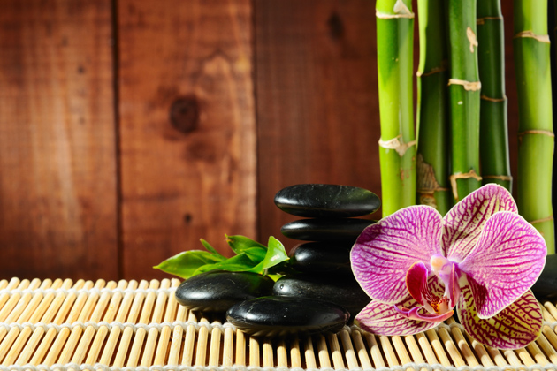 HD bamboo flowers download