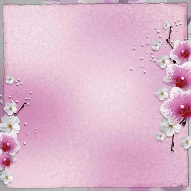 hd flower border pictures download  u2013 over millions vectors