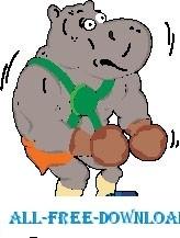 Hippo Boxing