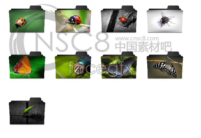 Insect folders desktop icons