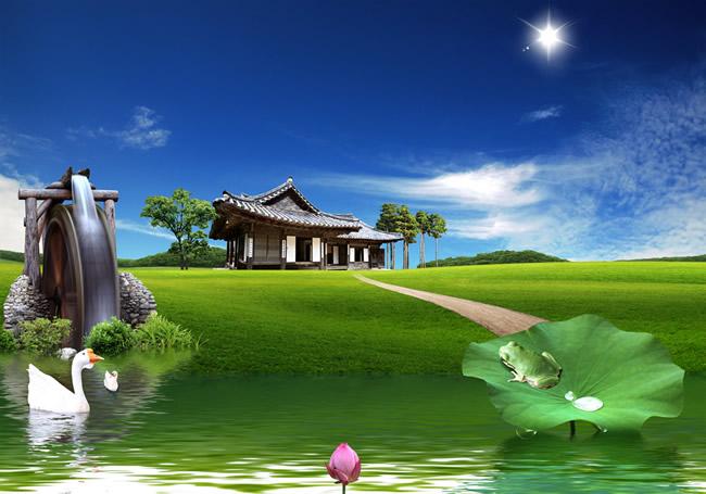 Landscape design pictures
