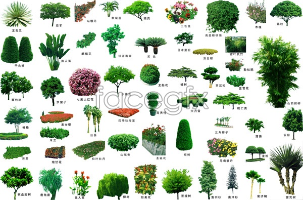 Landscaping trees psd over millions vectors stock for Images of landscaping plants