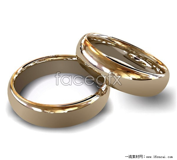Married couples of the ring vector 2