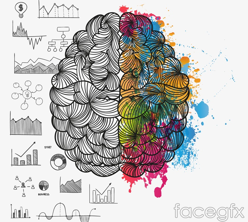 painted brain design vector – over millions vectors, stock photos, Modern powerpoint