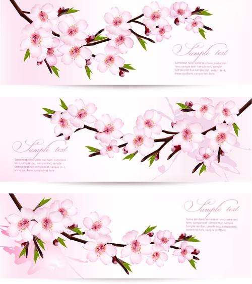 Pink sakura banner vector free