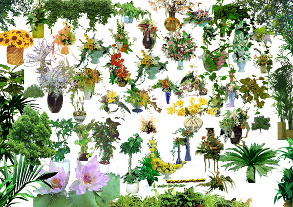 Ps later potted flowers source files psd – Over millions