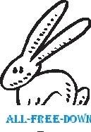 Rabbit 11