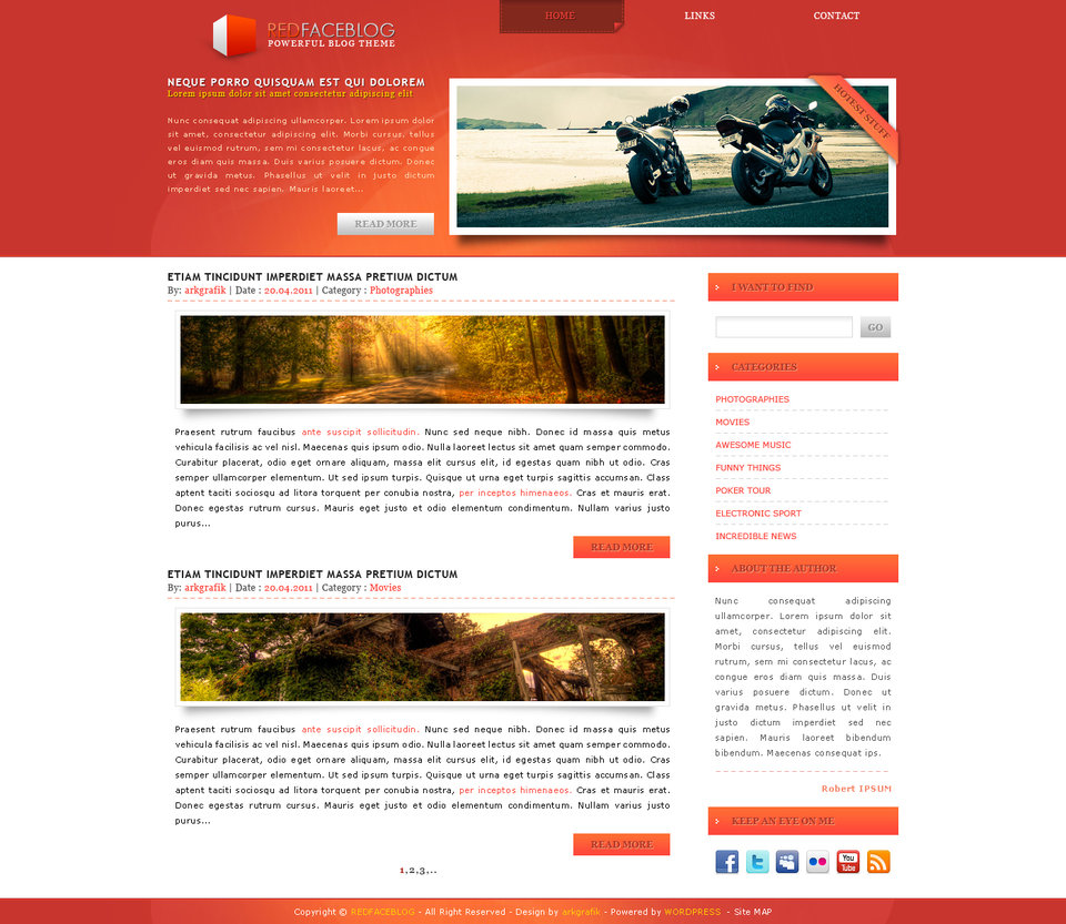 REDFACEBLOG wordpress template