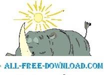 Rhino Sunbathing