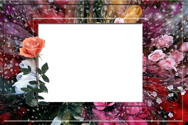 Rose Photo Frames Hd Pictures Over Millions Vectors