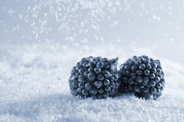 Snow background picture download