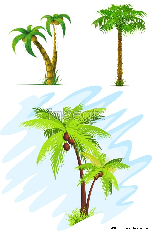 Summer palm tree vector – Over millions vectors, stock photos, hd