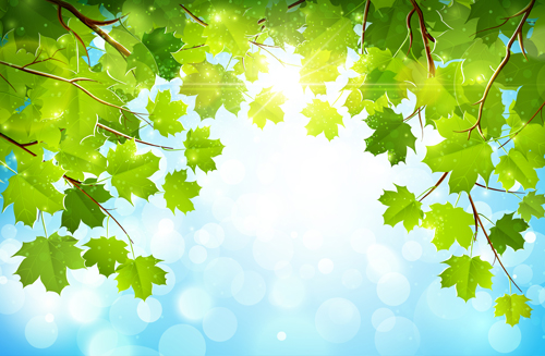 Sunlight and green leaf nature background 02 free over millions sunlight and green leaf nature background 02 free toneelgroepblik Image collections
