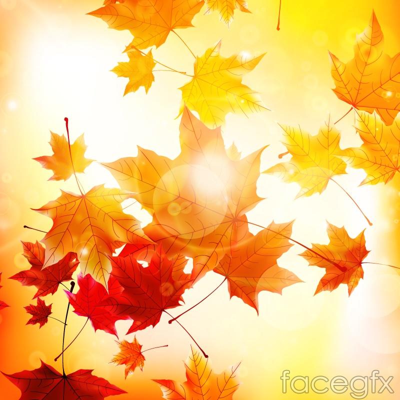 Sunny autumn leaves background vector over millions vectors sunny autumn leaves background vector toneelgroepblik Choice Image