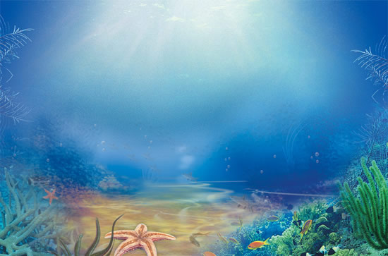 The beautiful underwater world psd over millions vectors stock the beautiful underwater world psd toneelgroepblik Images
