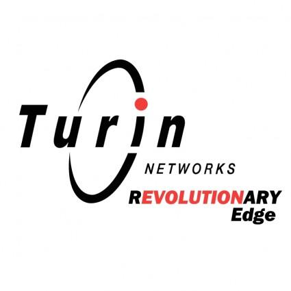 turin networks logo