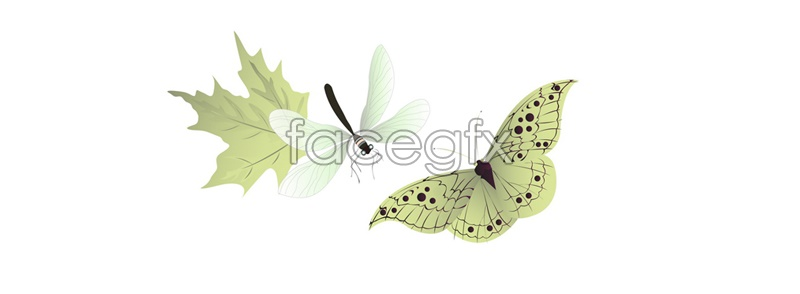 Vector butterflies dragonflies