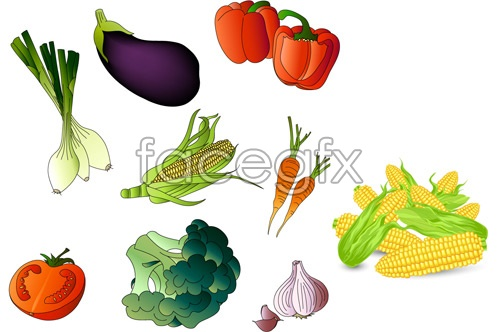 Vector common fruits and vegetables