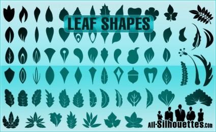 Vector Leaf Shapes