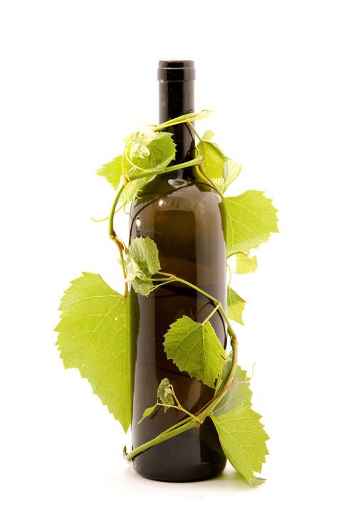 Vine bottle psd – Over millions vectors, stock photos, hd