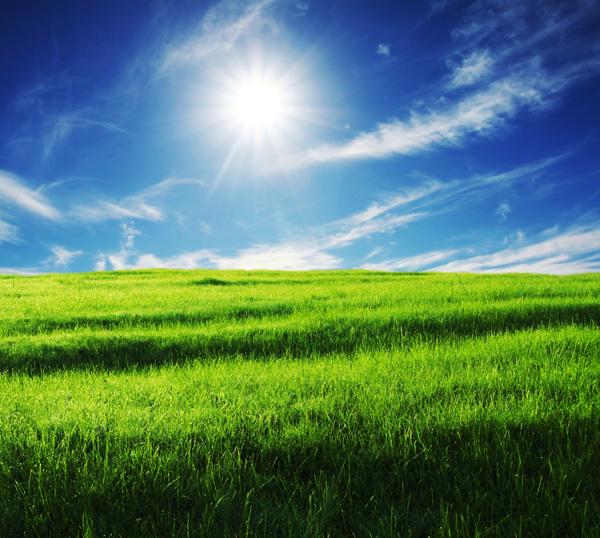 Windows xp bliss 1 psd over millions vectors stock photos hd windows xp bliss 1 psd toneelgroepblik Choice Image