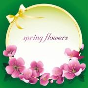 Link toDark pink flower spring background set vector 01 free