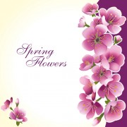 Link toDark pink flower spring background set vector 02 free