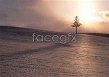 Link to67 dusk Dawn