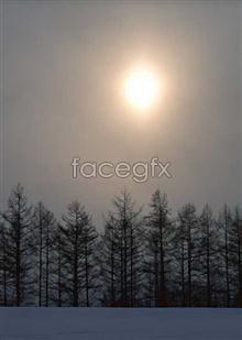 68 dusk Dawn