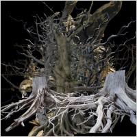 Link toDead tree psd 2