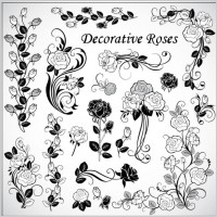 Link toDecorative rose pattern 02 vector