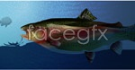 Link toDeep sea fish vector
