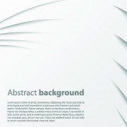 Delicate abstract background vector graphics 05